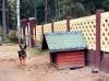 база отдыха Пикник парк