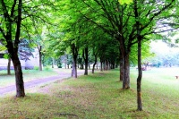 туристический комплекс Пышки