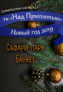 гостиничный комплекс Над Припятью базы отдыха Беларуси отдых в Беларуси Новый год 2019