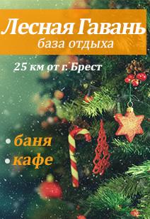 база отдыха Лесная Гавань базы отдыха Беларуси отдых в Беларуси зима 2019
