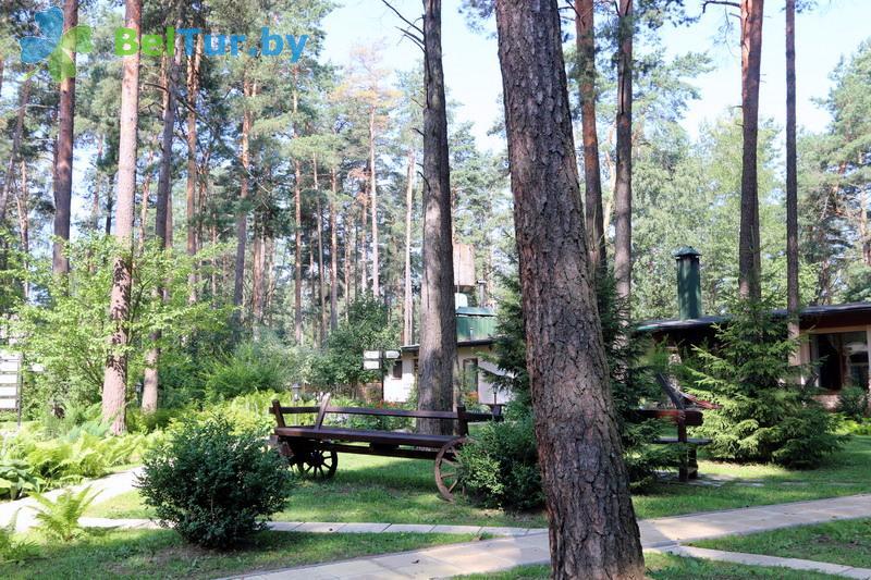Отдых в Белоруссии Беларуси - база отдыха Бивак - Территория и природа