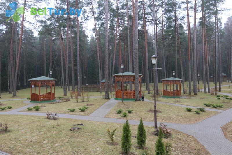 Отдых в Белоруссии Беларуси - учебно-оздоровительный комплекс Форум - Беседка