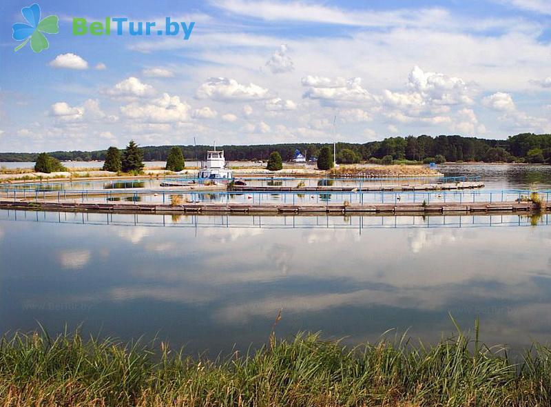Отдых в Белоруссии Беларуси - учебно-оздоровительный комплекс Форум - Водоём
