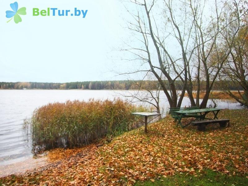 Отдых в Белоруссии Беларуси - база отдыха Коммунальник - Территория и природа