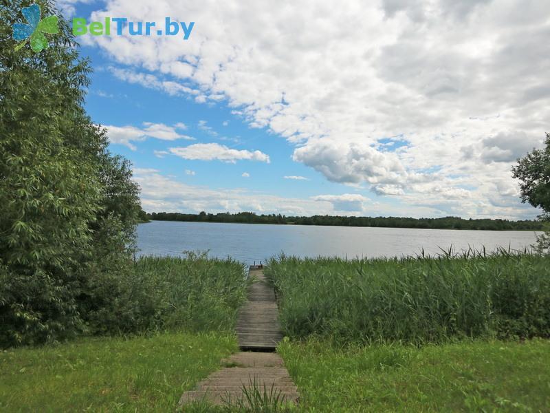 Отдых в Белоруссии Беларуси - дом охотника Лебединое - Территория и природа