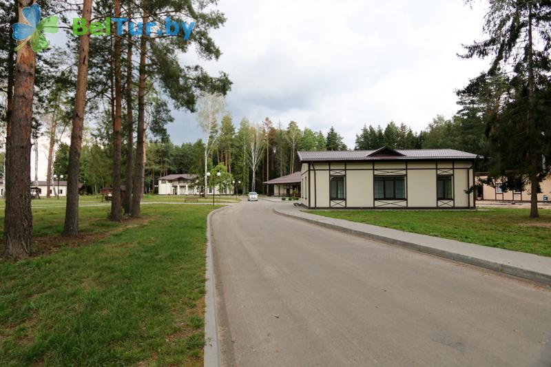 Отдых в Белоруссии Беларуси - база отдыха Чайка (Борисов) - Территория и природа