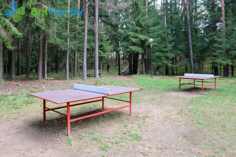 Отдых в Белоруссии Беларуси - оздоровительный комплекс Ислочь-Парк - Теннис настольный