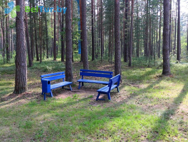 Отдых в Белоруссии Беларуси - оздоровительный комплекс Белино - Территория и природа