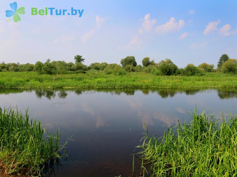Отдых в Белоруссии Беларуси - оздоровительный комплекс Белино - Водоём