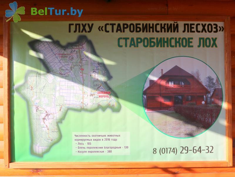 Отдых в Белоруссии Беларуси - дом охотника Старобинский - Схема территории
