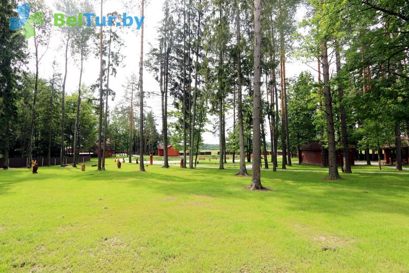 Отдых в Белоруссии Беларуси - дом охотника Глухариный ток - Территория и природа
