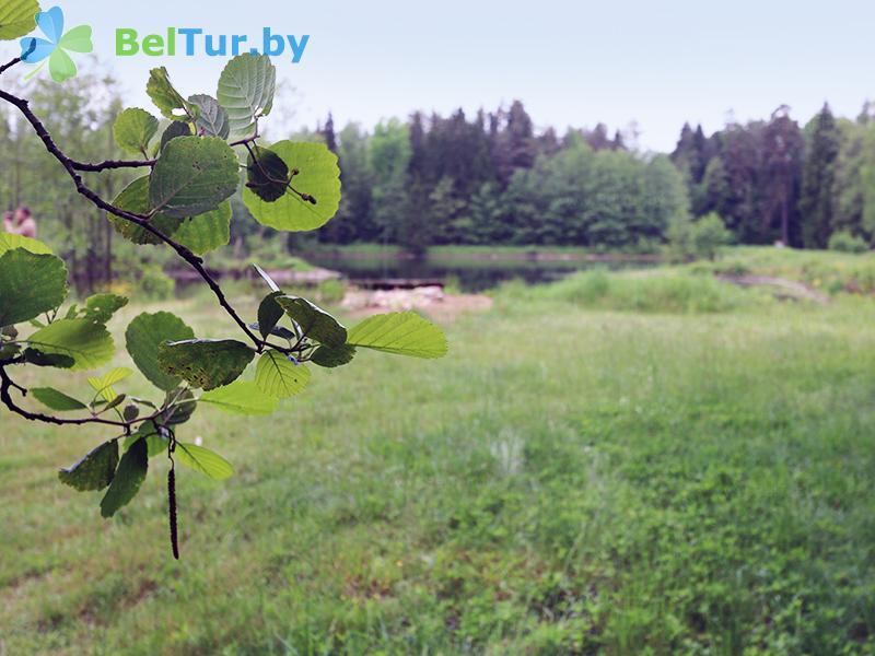 Отдых в Белоруссии Беларуси - гостиница Войтов мост - Территория и природа