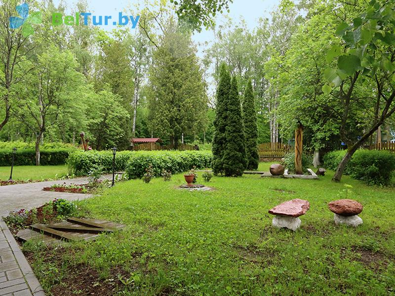 Отдых в Белоруссии Беларуси - гостиничный комплекс Жарковщина - Территория и природа