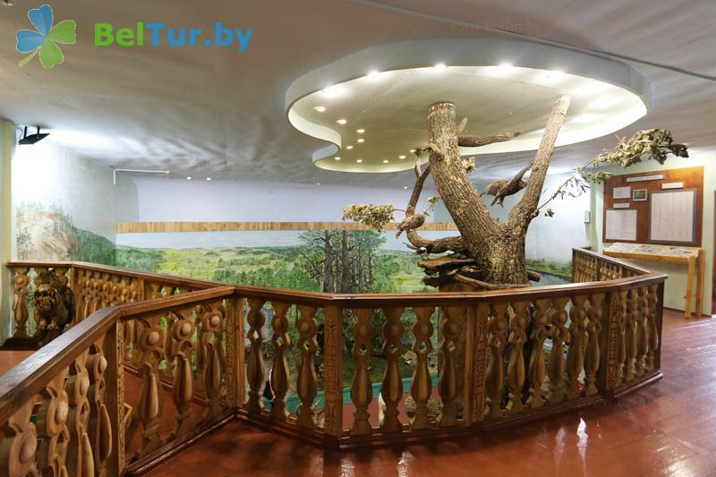 Отдых в Белоруссии Беларуси - гостиница Туров плюс - Музей
