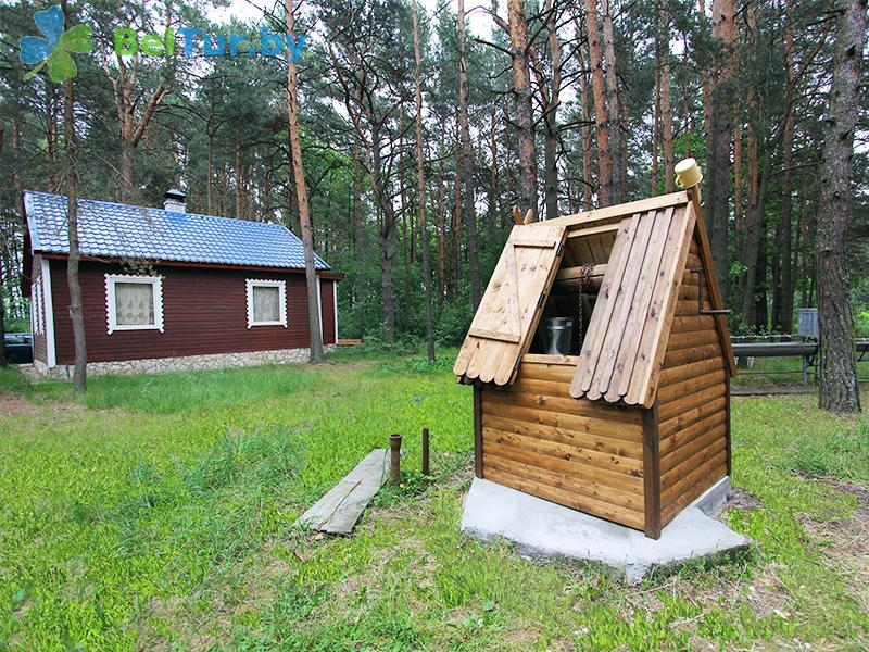 Отдых в Белоруссии Беларуси - база отдыха Комарово - Территория и природа