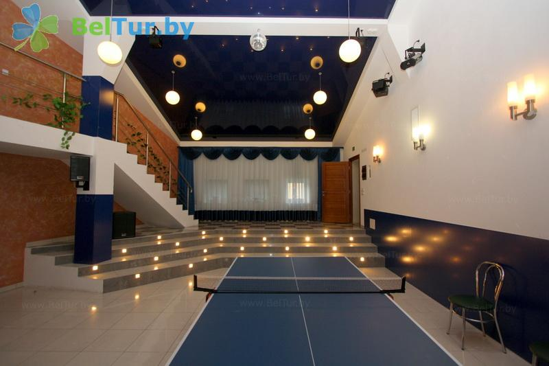 Rest in Belarus - health-improving complex Ogonek - Table tennis (Ping-pong)