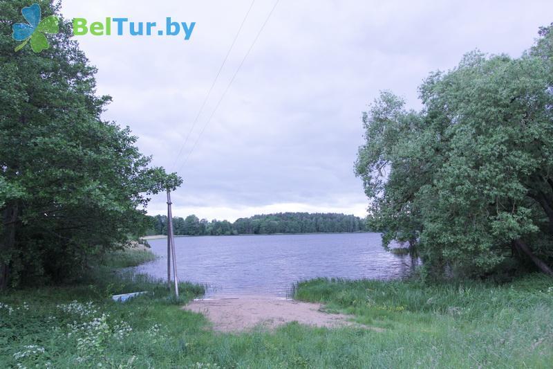 Отдых в Белоруссии Беларуси - гостевой дом Богино - Территория и природа