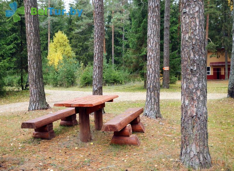 Отдых в Белоруссии Беларуси - база отдыха Пикник парк - Территория и природа