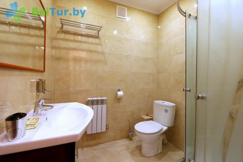 Отдых в Белоруссии Беларуси - гостиничный комплекс Браслав Лэйкс / Braslav Lakes - двухместный однокомнатный стандарт (гостиница)