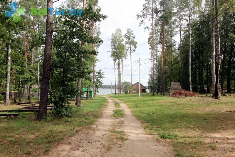 Отдых в Белоруссии Беларуси - база отдыха Отдых на поляне - Территория и природа