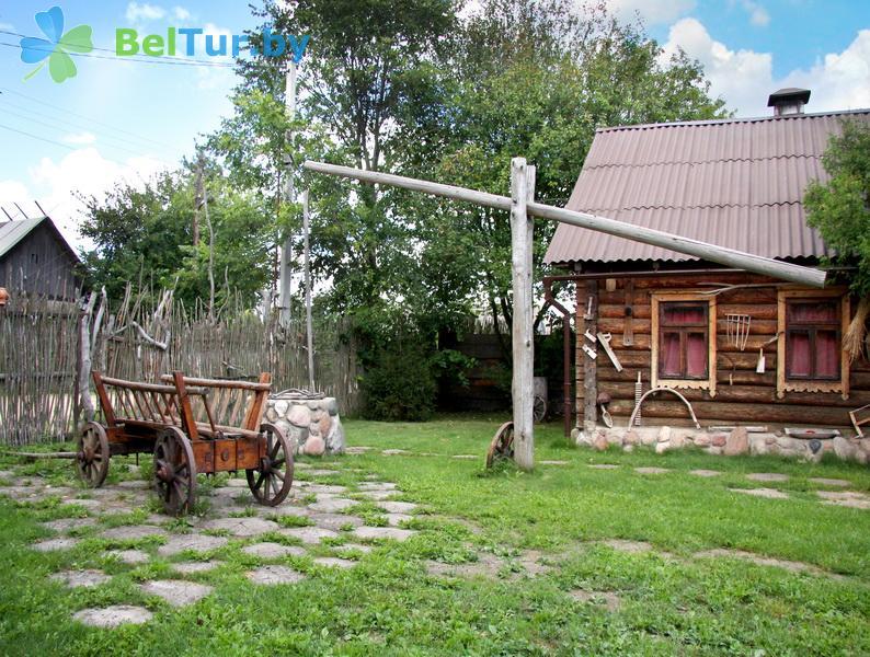 Отдых в Белоруссии Беларуси - усадьба Весёлая хата - Территория и природа