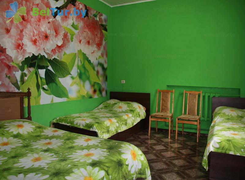 Отдых в Белоруссии Беларуси - усадьба Домашний очаг - дом (9 человек) (дом)
