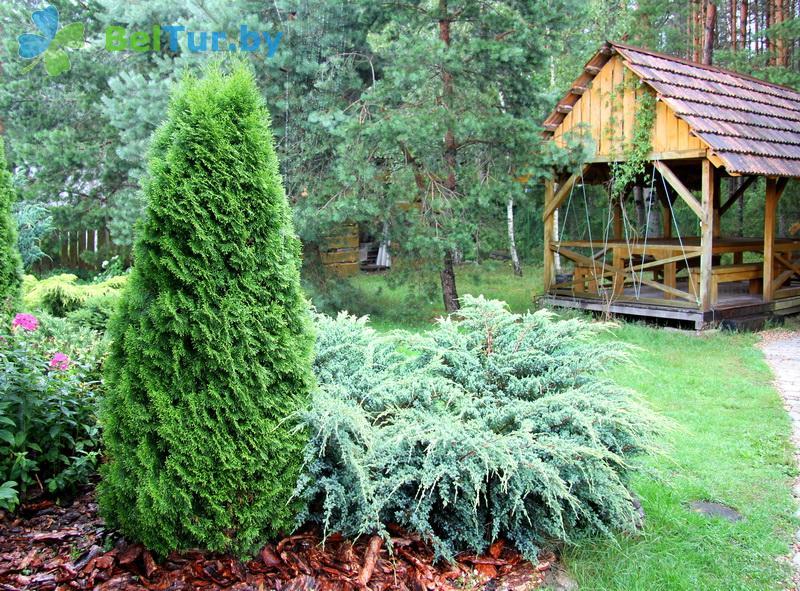 Отдых в Белоруссии Беларуси - усадьба Павлиново - Территория и природа