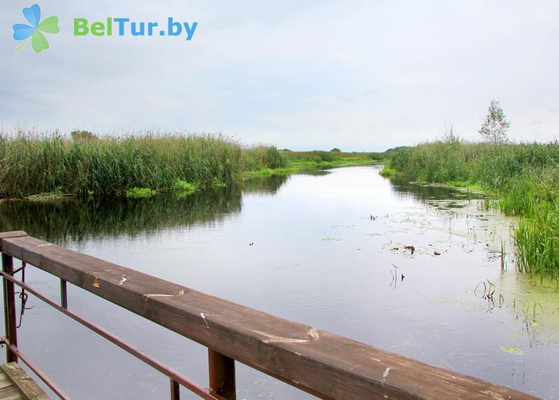 Отдых в Белоруссии Беларуси - усадьба Калинка 2 - Водоём