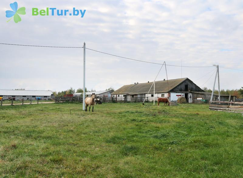 Rest in Belarus - farmstead Slutsky Straus - Territory