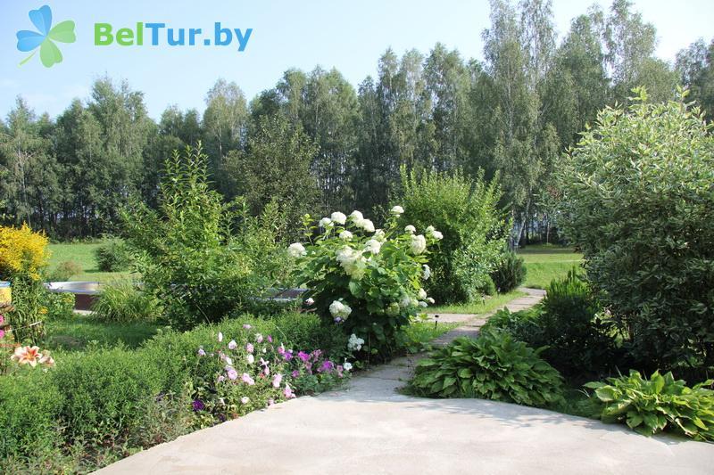 Rest in Belarus - farmstead Medunitsa - Territory