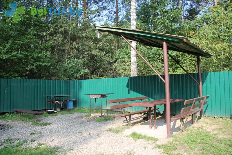 Отдых в Белоруссии Беларуси - усадьба Медуница - Площадка для шашлыков