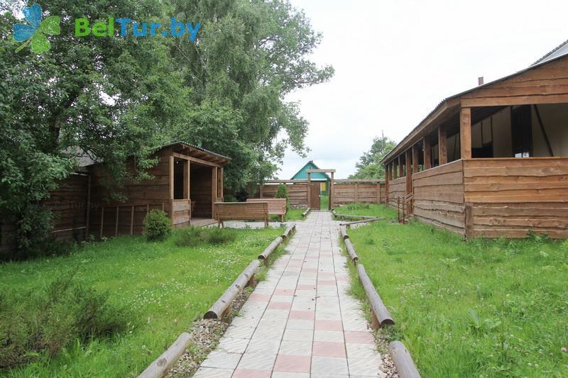 Отдых в Белоруссии Беларуси - база отдыха Березовый двор - Территория и природа