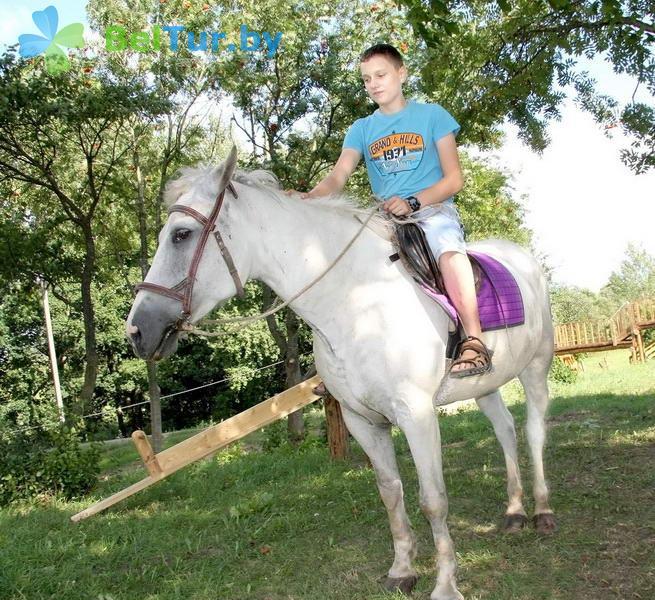Отдых в Белоруссии Беларуси - база отдыха Березовый двор - Конюшня