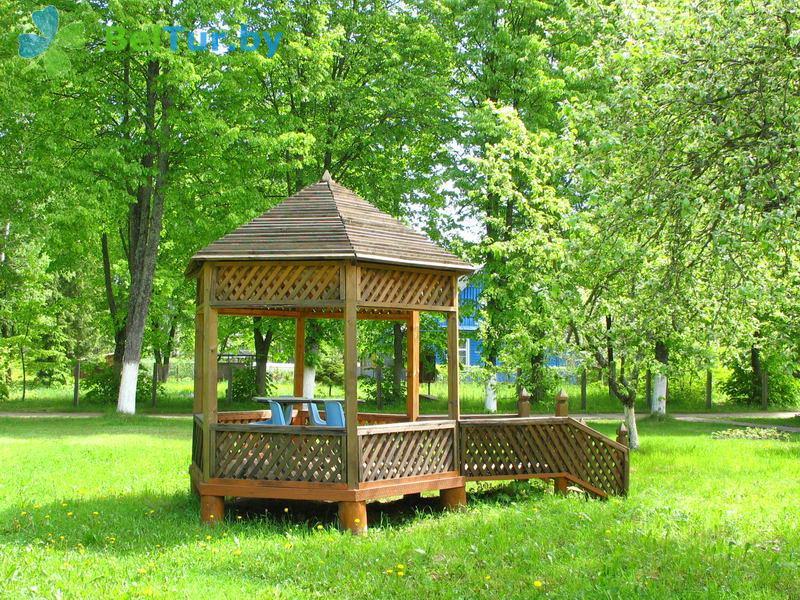 Отдых в Белоруссии Беларуси - гостевой дом Нарочь на Зеленой - Беседка