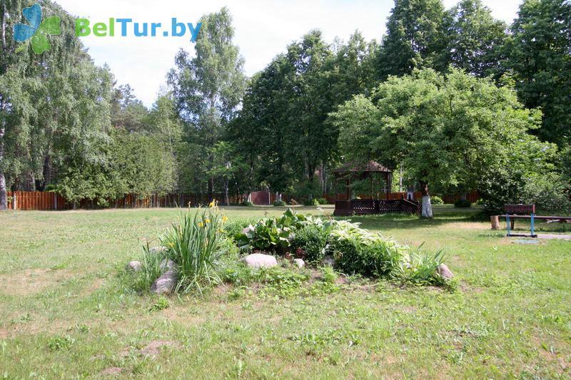 Отдых в Белоруссии Беларуси - гостевой дом Нарочь на Зеленой - Территория и природа