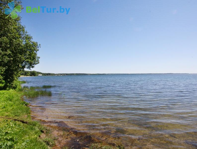 Отдых в Белоруссии Беларуси - гостевой дом Антонисберг - Рыбалка и охота