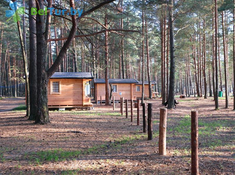 Отдых в Белоруссии Беларуси - кемпинг Клевое место - Территория и природа