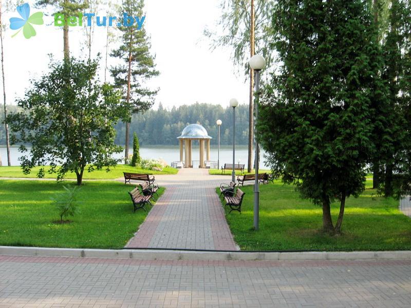 Отдых в Белоруссии Беларуси - база отдыха Крупенино - Территория и природа