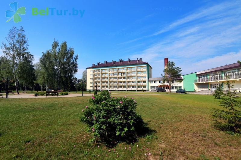 Отдых в Белоруссии Беларуси - туристический комплекс Лосвидо - Территория и природа