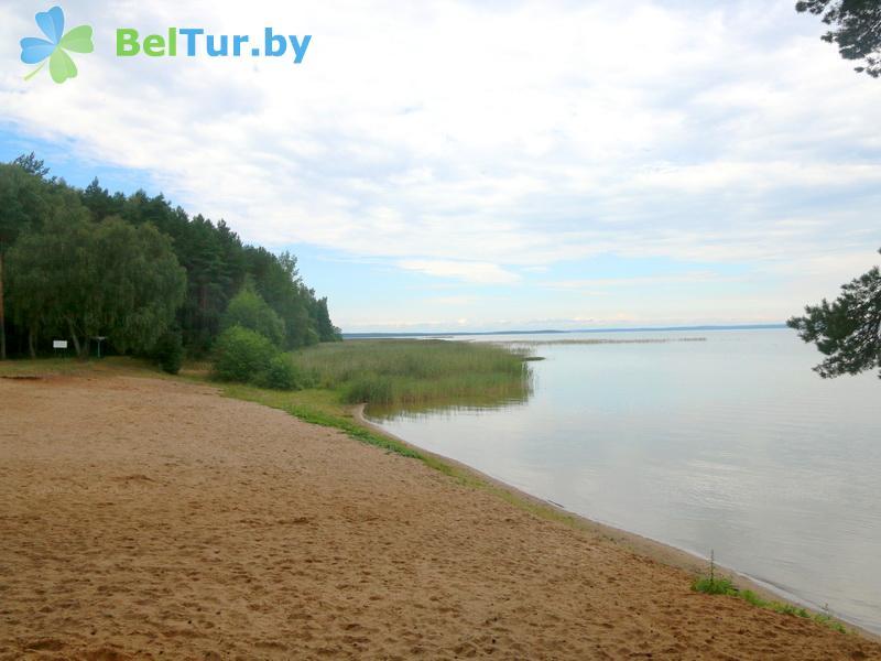 Отдых в Белоруссии Беларуси - база отдыха Нарочанка - Пляж