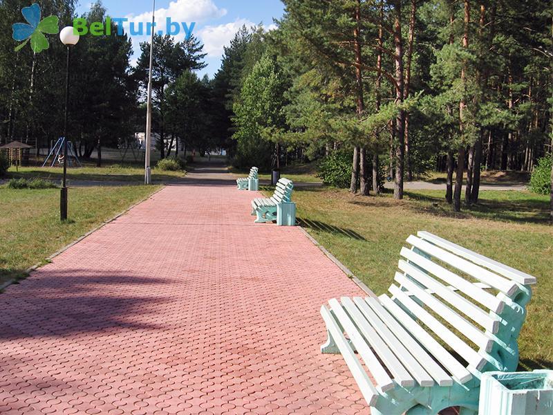 Rest in Belarus - recreation center Narochanka - Territory