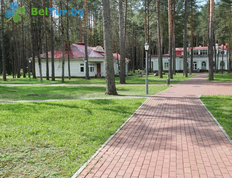 Отдых в Белоруссии Беларуси - гостиничный комплекс Огонёк - Территория и природа