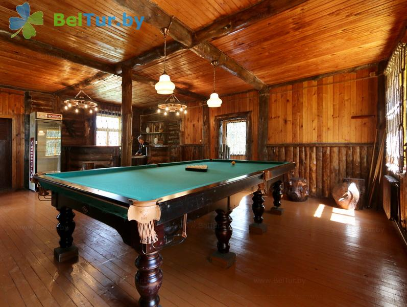 Rest in Belarus - hunter's house Vygonovsky - Billiards