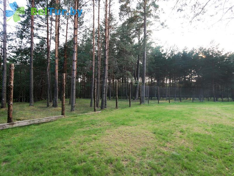 Отдых в Белоруссии Беларуси - дом охотника Крупский - Территория и природа