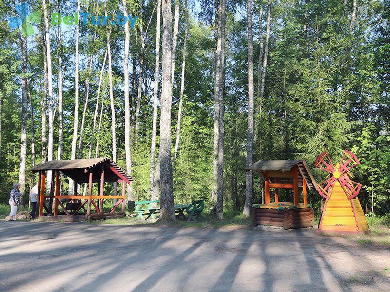 Отдых в Белоруссии Беларуси - база отдыха Актам - Территория и природа
