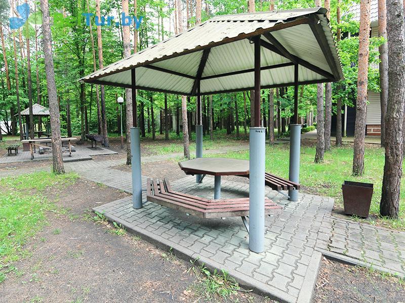 Отдых в Белоруссии Беларуси - база отдыха Белое озеро БЖД - Площадка для шашлыков