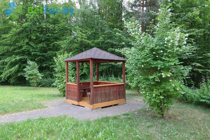 Отдых в Белоруссии Беларуси - база отдыха Белое озеро БЖД - Территория и природа