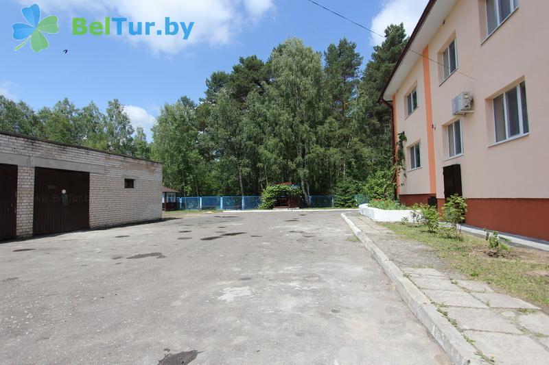 Отдых в Белоруссии Беларуси - база отдыха Березовая роща - Территория и природа