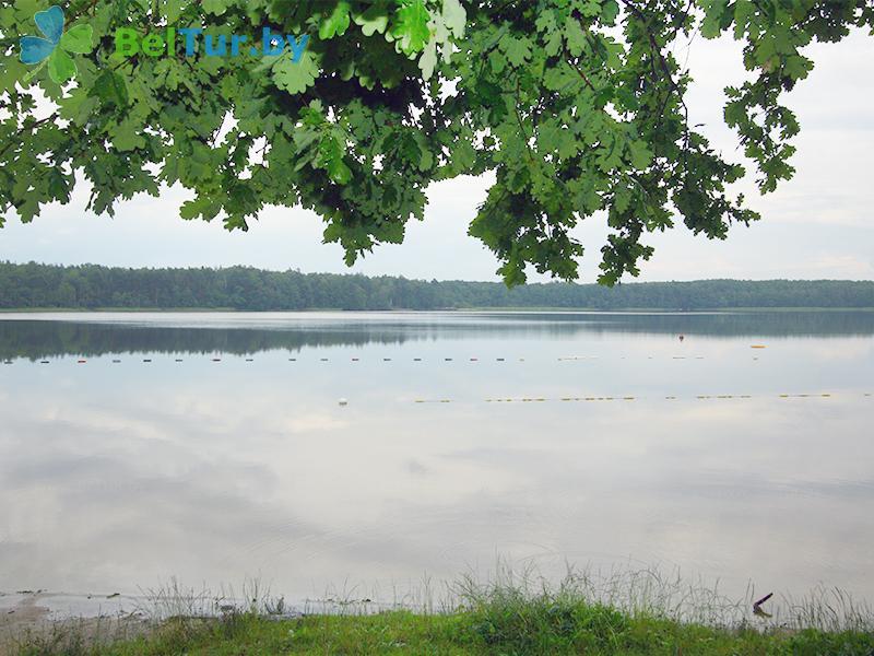 Отдых в Белоруссии Беларуси - база отдыха Березовая роща - Водоём