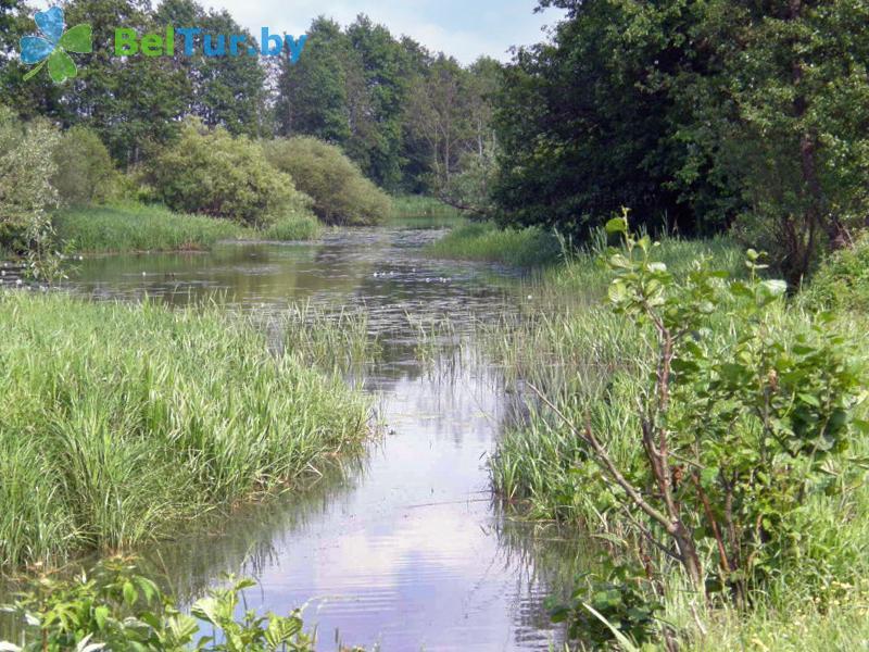 Отдых в Белоруссии Беларуси - кемпинг Дубы - Водоём